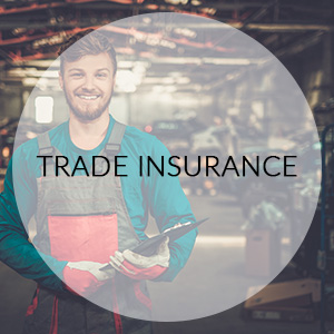 hogan-insurance-solutions-trade-insurance