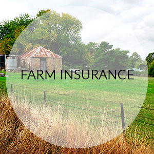 hogan-insurance-solutions-business-farm-insurance